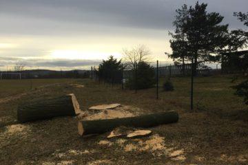 Pokácené stromy na hřišti v Lubojatech